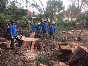 Integrity Tree Service The Crew